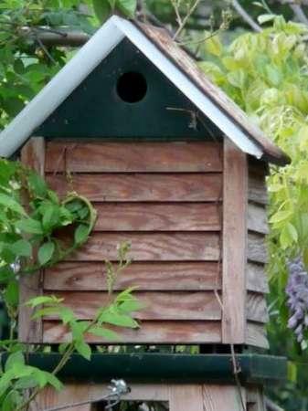 09 vogelhuisjes